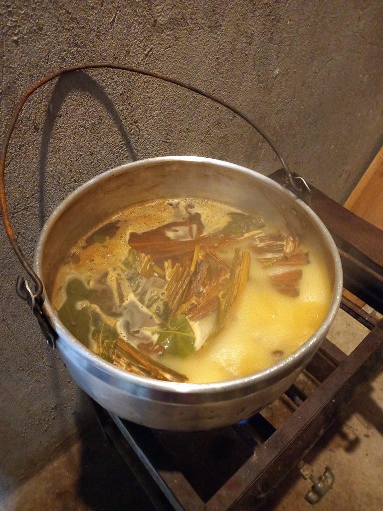 Процесс приготовления аяхуаски